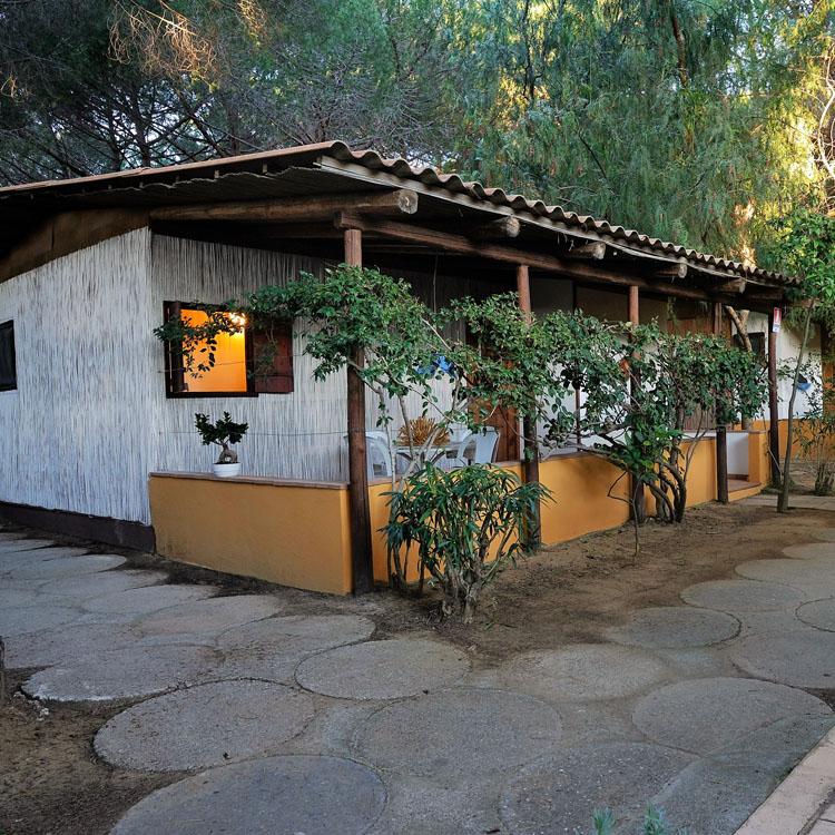 Cottage perlinati legno bianco blackmarlin